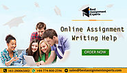 online assignment experts