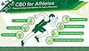 CBD & Exercise: How CBD Can Help You In Daily Workout?