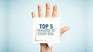 Top 5 Reasons to Study B.Sc. - CSIT Blog