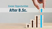 Career Opportunities After B.Sc. - CSIT Blog