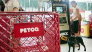 Petco, PetSmart to Stop Selling China-Made Dog and Cat Treats