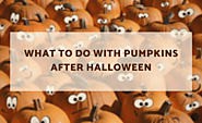 What to Do With Pumpkins After Halloween: 17 Cool Ideas
