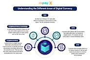 Understanding the Different Areas of Digital Currency Solutions