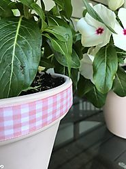 DIY Design and Decorating: Creative Ways to Decorate Flowerpots