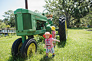 farm fun activities florida