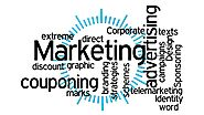 Learn the Principles of Marketing Strategies for Your Business or Blog
