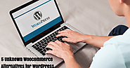 5 Unknown Woocommerce Alternatives for WordPress You should Know