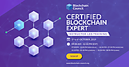 You Want To Become A Blockchain Developer?