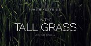 Flixtor Download In the Tall Grass 2019 Free Movie Online