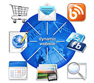 Dynamic Website Design Services Company USA | Best Website Designer