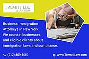 Hire business immigration services in NY