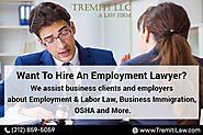 Hire an employment lawyer for your business in NY