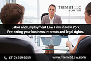 Hire A Professional Employment Law Firm In New York