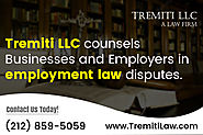 Hire an employment law experts in New York
