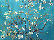 Branches with Almond Blossom Painting by Vincent Van Gogh