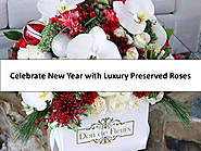 Celebrate New Year with Luxury Preserved Roses