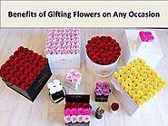 Benefits of Gifting Flowers on Any Occasion