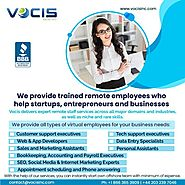 Trained Remote Employee | Vocis Inc | United States