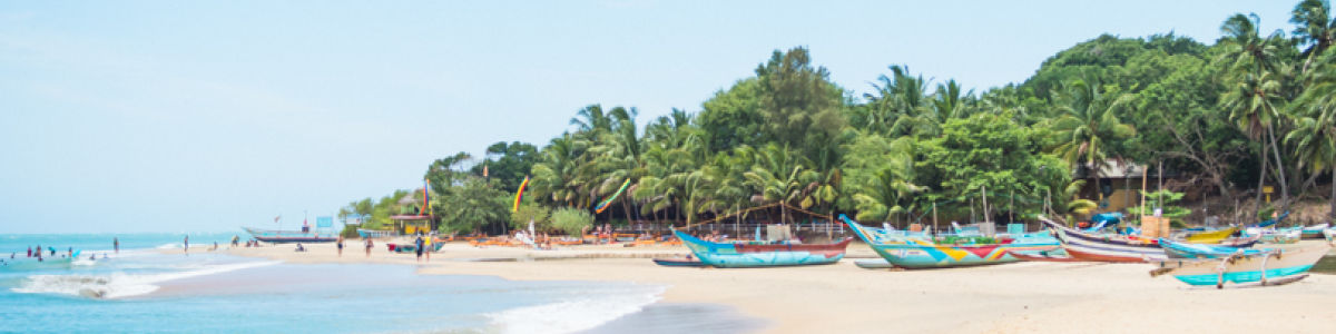 Headline for Things to Do in Arugam Bay - Top Activities in Arugam Bay