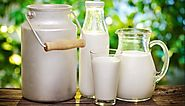 Health Benefits of Milk and Uses of Milk | Our Health Tips