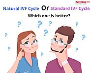 NATURAL VS STANDARD IVF OPTIONS