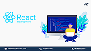 Top React Native App Development Company -MobileCoderz