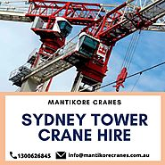 What is the importance of tower crane rentals for tall building construction projects?