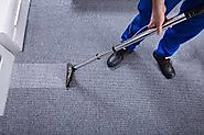 How to clean your carpet from pet urine stain and odor? - Carpet Cleaning Service
