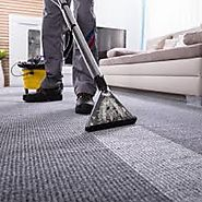 Which Carpet Cleaning Method Is The Best?