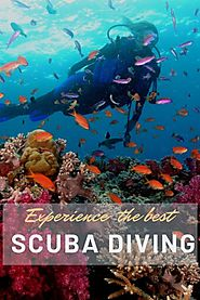 Why Fiji is best place to do Scuba Diving