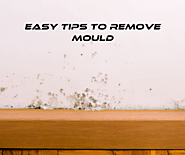 Website at https://www.betterindoors.com/how-to-remove-mould-from-walls/