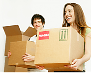 What is the Significance of Using a Professional Removal Service for Central Coast Home Relocation?
