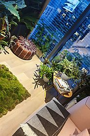 How to decorate with indoor plants - latest trends - The Middle-Sized Garden | Gardening Blog