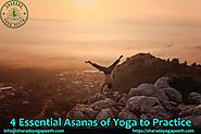 Sharada Yoga Peeth — 4 Essential Asanas of Yoga to Practice