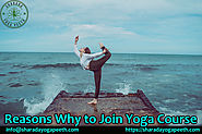 Reasons Why to Join Yoga Course – Sharada Yoga Peeth