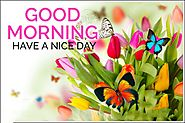 10+Good Morning Love - HD IMAGES-GIF-NATURE