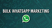 whatsapp marketing company in jaipur|whatsapp marketing in jaipur