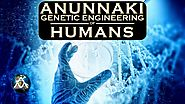 Anunnaki Genetic Engineering of Humans Video