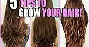 What is the Best Way to Grow Your Hair Long? | Videohippy.com