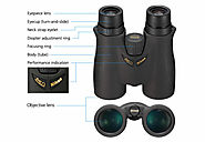 How to Use Binoculars: Ultimate Tips and Tricks You Need | Target Frog