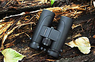 How to Focus Binoculars - In Right Way | Target Frog