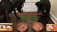Raw dog food starter packs for puppy and adult dogs