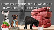 Find out more about the low purine raw diet for dogs