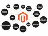Choose Magento development India to build customized online store with best features