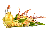 Is it healthy to include corn oil in your food?