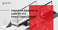 What to Look for in a Forex Client Cabinet | Sanfrix Brokerage Technology