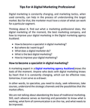 professional Digital Marketing Agency in Auckland