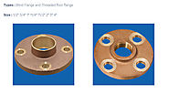 Bronze Flanges – Bronze casting Copper casting Aluminium bronze casting Stainless Steel Brass casting in India – Cone...