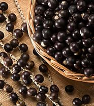 20 Amazing Benefits And Uses Of I-Pulse[Acai Berries (Karvandha)] For Health, Skin, And Hair