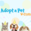 Jacksonville, Florida - Pet Adoption. The Animal Rescue and Adoption Agency Inc. (TARAA) has dogs, puppies, cats, and...